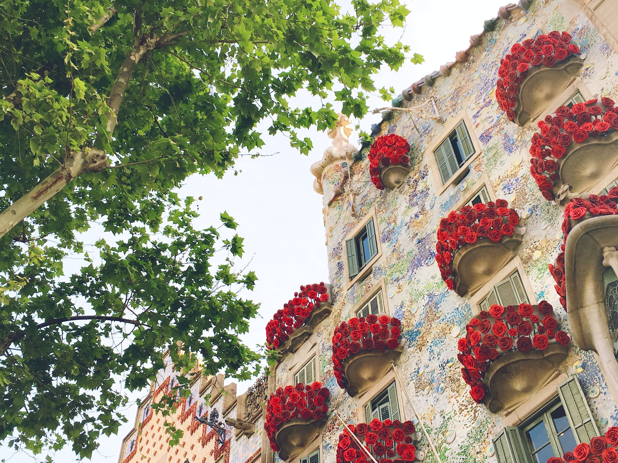 Top things to do in Barcelona Spain Visit Casa Batlo